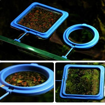 Automatic Fish Feeder Rings Help You Simplify Dinner Time at Your Aquarium