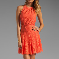 Juicy Couture Scallop Lace Dress in Sweet Clementine from REVOLVEclothing.com