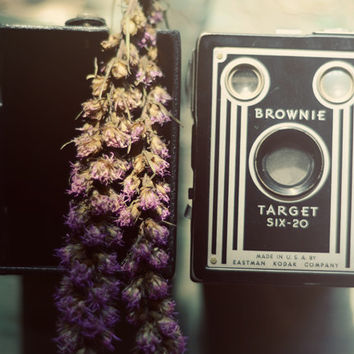 Still life photograph- brownie, vintage camera, floral, whimsical, purple flower, golden, camera print, fine art print, 8x10 photograph