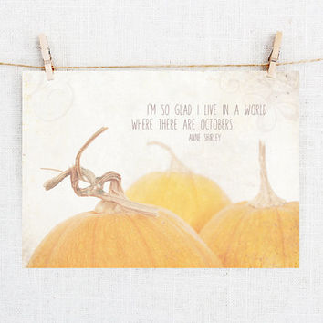 Original Photography Postcards, Pumpkins, Carte Postale