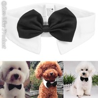 """FREE"" Gentleman Dog Bow Tie ( Just Pay Shipping )"