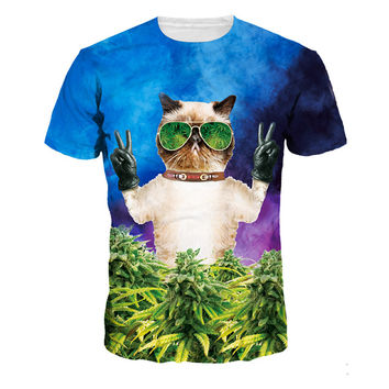 Shop Crazy Cats American Apparel T Shirt The Cat Dark Glasses