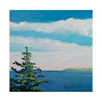 Lonely Coastal Spruce Tree Original Small Oil by MyMainePaintings