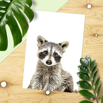 Raccoon Print, Woodland Animals, Printable Decor, * Woodland Nursery, Forest Animal, Animal Art, Nursery Decor, Printable Art