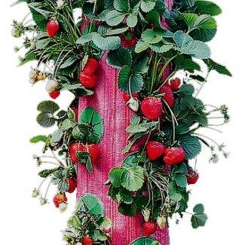Red Upside-Down Strawberry Planter vertical garden wall planter grow bag planter wall planter bag growing bags vertical garden