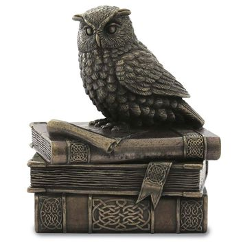 Collared  Owl On Books Trinket Box
