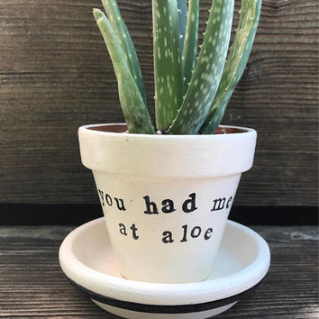 "3"" succulent pot-- ""You had me at aloe""-- Punny Aloe Vera Plant Pot Holder and Saucer"