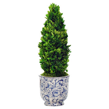 "24"" Boxwood in Cache Planter, Blue, Outdoor Urns, Planters & Jardinieres"