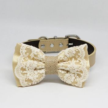 Ivory Lace Dog Bow Tie collar, Burlap, Rustic, Country, Pet wedding accessory, Classy