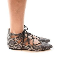 Pippa123 Gray Snake By Wild Diva, Pointy Toe Caged Lace Up Ankle Ballet Trendy Flat
