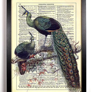 Peacock Lovers, Vintage Illustration, Eco Friendly Home, Kitchen, Bathroom, Nursery Decor, Dictionary Book Print Buy 2 Get 1 FREE