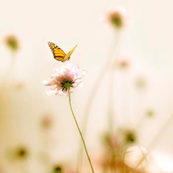 Monarch Butterfly, Nursery room wall art, Garden, pastel summer, nature photography, pink, yellow, sunny