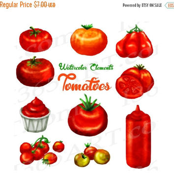 50% OFF SALE Tomato Clipart, Watercolor Tomatoes Clip art, Garden Vegetable, Ketchup, Tomato Illustration, Hand Painted Elements, Commercial