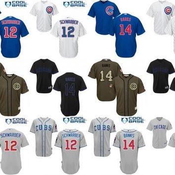 2016 World Series Champions patch Youth Chicago Cubs 12 Kyle Schwarber 14 Ernie Bank kids Baseball Jersey cool base stitched size S-XL