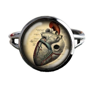 Human Anatomy Ring - Heart with Valves - Anatomical Jewelry