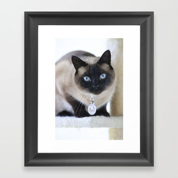 Innocent Expression Framed Art Print by Theresa Campbell D'August Art