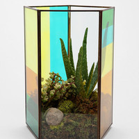 Urban Outfitters - Magical Thinking Pentagon Tabletop Terrarium