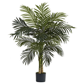 4' Golden Cane Palm Tree - JCPenney