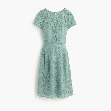 J.Crew Womens Alisa Dress In Leavers Lace