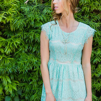 Lyna Mint Lace Fit and Flare Dress