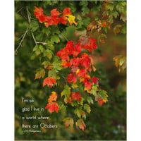 Inspirational print fall leaves photo, red and green autumn decor typographic print
