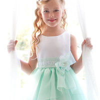 Daisy Lee Organza Flower Girl Dress in Mint