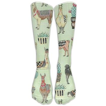 Desert Llama Novelty Cotton Knee High All-Over Printed Socks