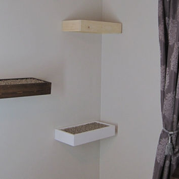 Floating Wood  Cat Shelf  with carpet