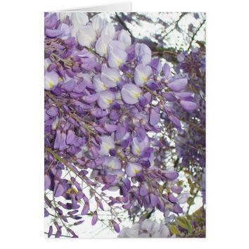Wisteria Purple Card