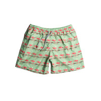 Estivo Trunks Flamingos Green