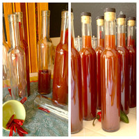 Vinegar - Chile Vinegar - Handcrafted by Spoiled Rotten Vinegar(TM)