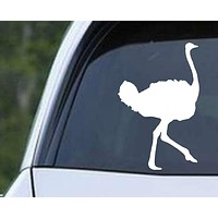 Ostrich (ver c) Die Cut Vinyl Decal Sticker