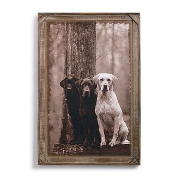 Labs Barnwood Gallery Wall Art