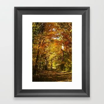 Woods Lake Trail Framed Art Print by Theresa Campbell D'August Art