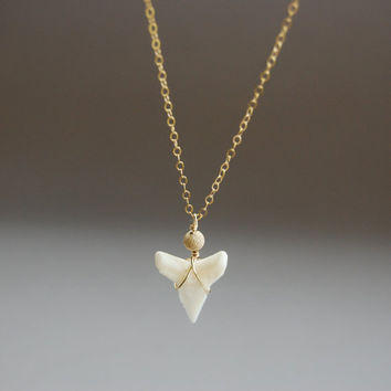 Mano necklace  a real shark tooth a 14kt gold by kealohajewelry