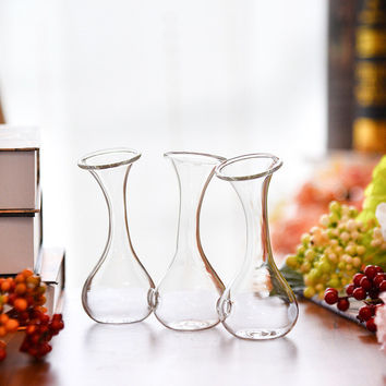 Handmade Clear Glass Terrarium Vase