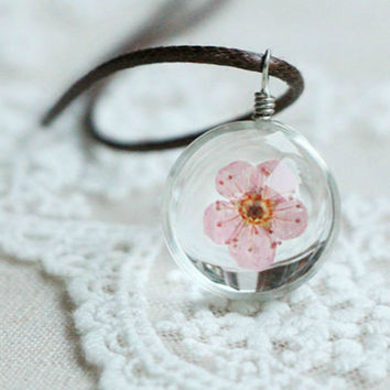 Glass Ball Bottle Dandelion Clover Real Flower Pendant Long Leather Chain Necklace Lucky Wish Locket Jewelry For Women Friend