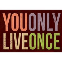 You Only Live Once Art Print Poster - 13x19