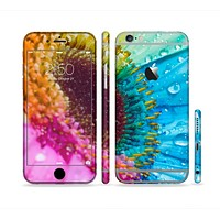 The Vibrant Colored Wet Flower Sectioned Skin Series for the Apple iPhone 6/6s Plus