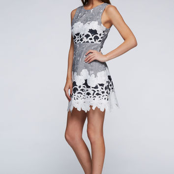 Woven Lace Embroidered Dress
