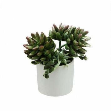 """7.75"""" Artificial Mixed Green and Red Succulent Plants in a Decorative White Pot"""