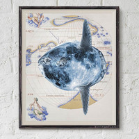 Moonfish digital download image, printable nautical art, sea art, bathroom wall decor illustration.