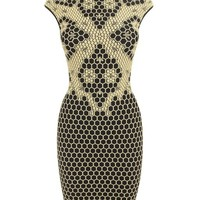 Alexander McQueen | Black/pale yellow Honeycomb Bee 3D Puckering Lace Jacquard Mini-dress