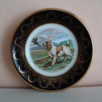 Springer Spaniel Hunting Dog Plate Vintage Miniature Dish Made in Arklow Ireland Dog and Pheasant Sporting Scene Gold Trim Dog Lovers Gift