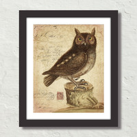 Vintage Owl Collage No. 72 Original Natural History Art Collage Canvas Art Print