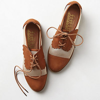 Mesh Owen Oxfords