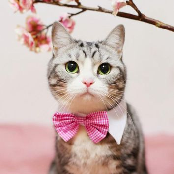 Velcro Bow Tie, Checkered Design Cat Tie, Cute Looking Cat Costumes, Cat Collar, 5 Designs Available