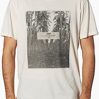 Shop Palmstruck T-Shirt by Reef (#00B12D) on Jack's Surfboards