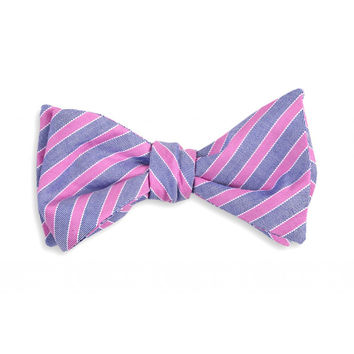 Middleton Stripe Bow Tie in Violet and Navy by High Cotton