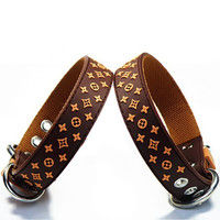 Dog collar & Leads